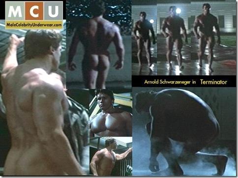 Arnold_Schwarzeneger_Terminator_01